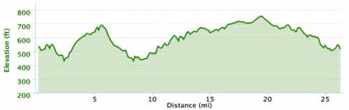 Austin Marathon Race Report  Running Without Music